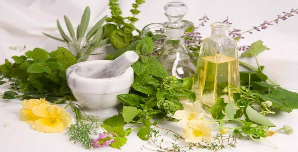 img-Herbal-Medicine2